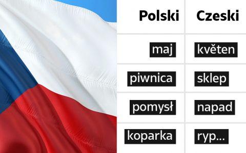 Język czeski i język polski – podobieństwa i różnice - Polszczyzna.pl