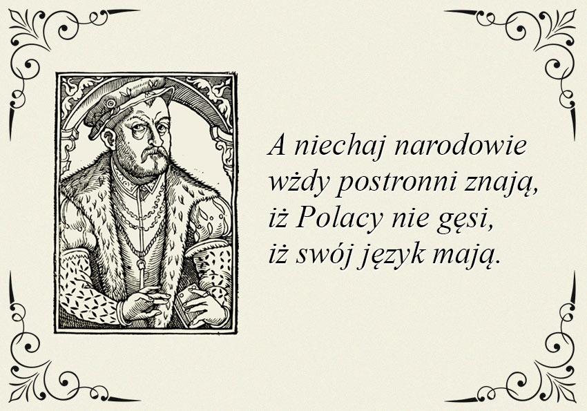 Polacy nie gęsi… Co Rej miał na myśli? - Polszczyzna.pl