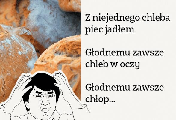 Nie odwracaj kota do góry nogami! Kontaminacje frazeologiczne i inne innowacje - Polszczyzna.pl