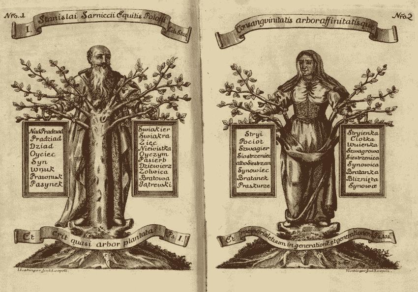 Jątrew, paszenog i szurzyna – staropolskie nazwy stopni pokrewieństwa