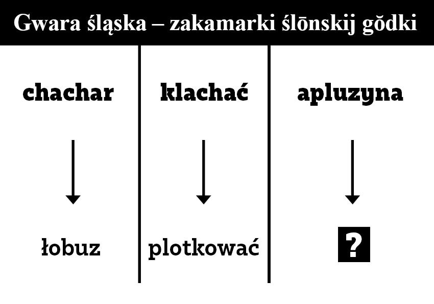 Gwara śląska – zakamarki ślónskij godki - Polszczyzna.pl