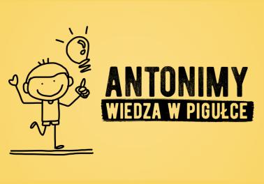 Antonimy – wiedza w pigułce, definicja, przykłady - Polszczyzna.pl