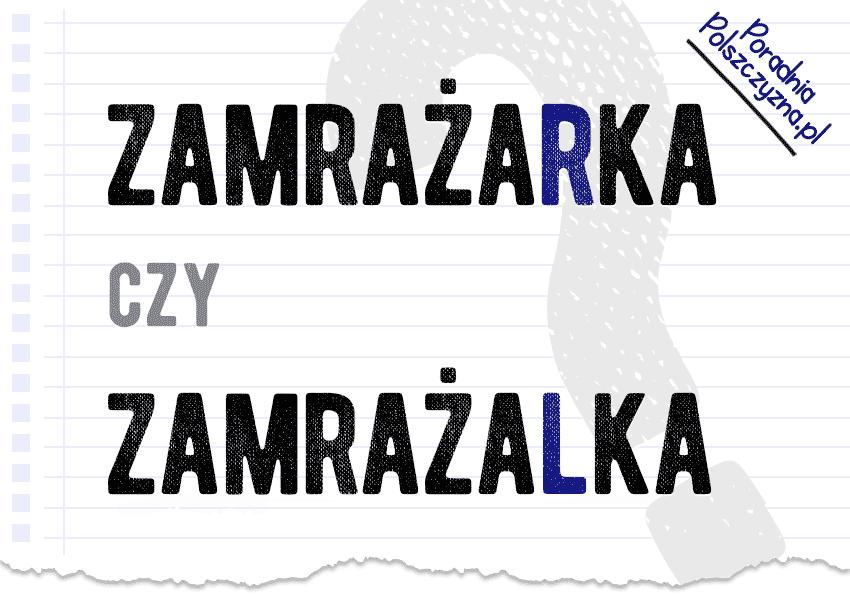 Zamrażalka czy zamrażarka? - Polszczyzna.pl