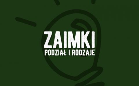 Zaimki podział i rodzaje. Definicja i przykłady. Polszczyzna.pl