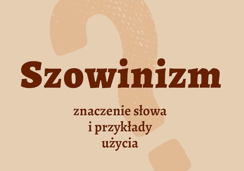 Szowinizm co to jest słownik definicja znaczenie słowa przykłady użycia etymologia Polszczyzna.pl
