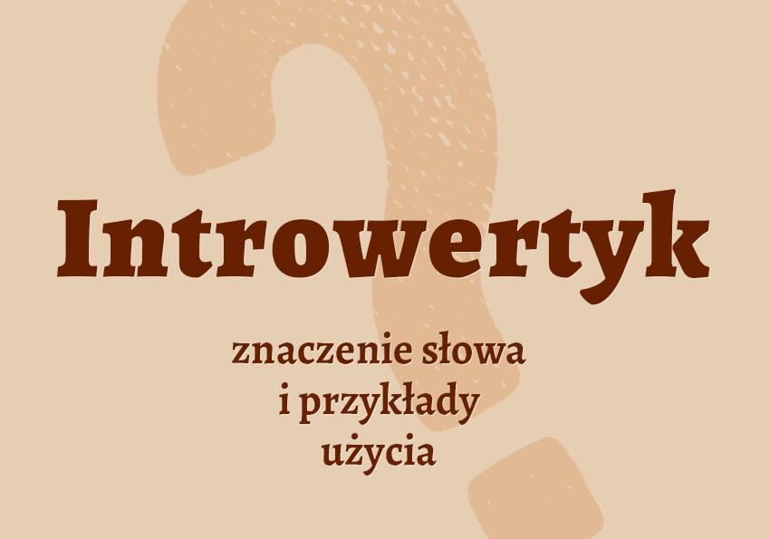 Introwertyk kim jest słownik definicja znaczenie słowa przykłady użycia synonim introwertyk inaczej Polszczyzna.pl