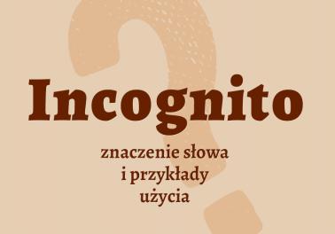 incognito co znaczy definicja słownik znaczenie slowa przyklady synonim Polszczyzna.pl