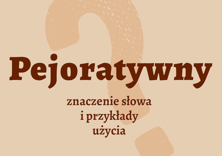 pejoratywny co to znaczy słownik definicja znaczenie słowa przykłady użycia synonim etymologia Polszczyzna.pl