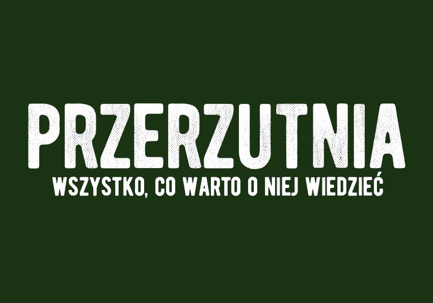 przerzutnia co to jest definicja wyjaśnienie przykłady objaśnienie przykłady środki stylistyczne wiersz poezja Polszczyzna.pl