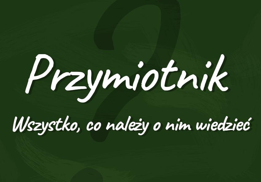 przymiotnik co to jest na jakie pytania odpowiada definicja wyjaśnienie przykłady podział Polszczyzna.pl