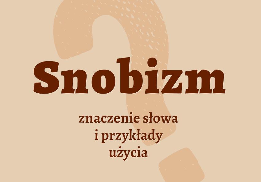snobizm co to jest co znaczy snob kto to jest słownik definicja znaczenie słowa przykłady użycia synonim etymologia dezaprobować czyli Polszczyzna.pl