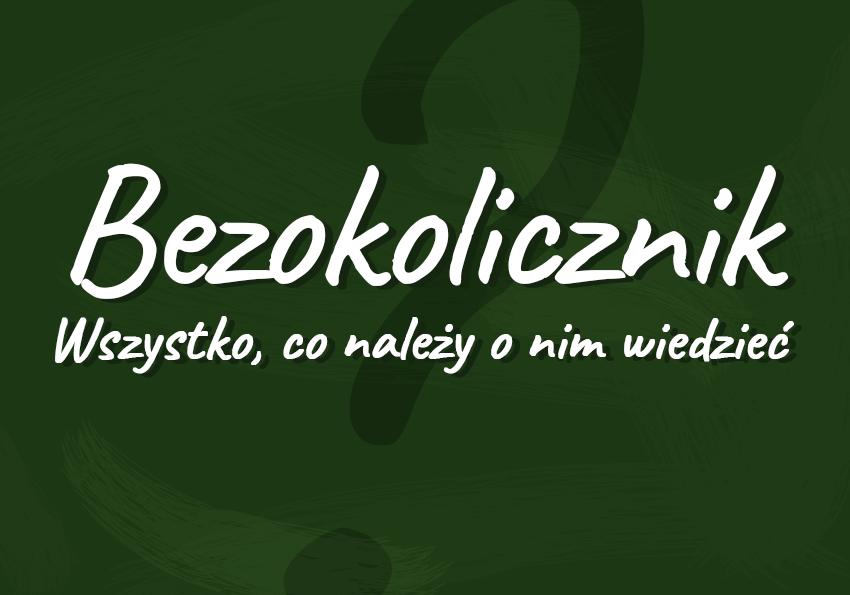 bezokolicznik co to jest definicja przykłady funkcje podział wszystko co trzeba wiedzieć Polszczyzna.pl