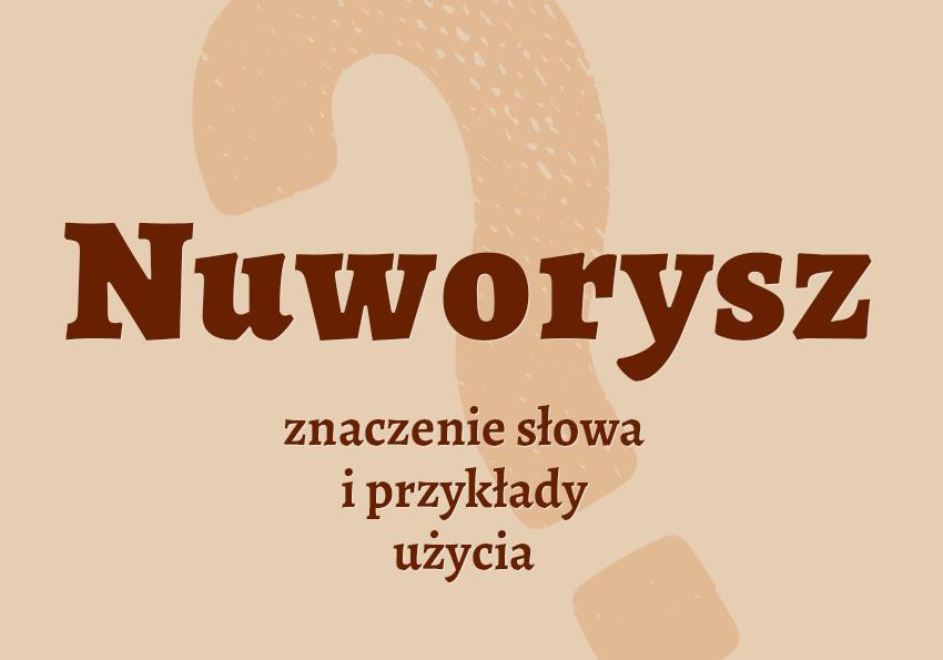 nuworysz kto to jest znaczenie definicja nuworysza synonim słownik przykłady odmiana nuworysz co to znaczy kim jest Polszczyzna.pl