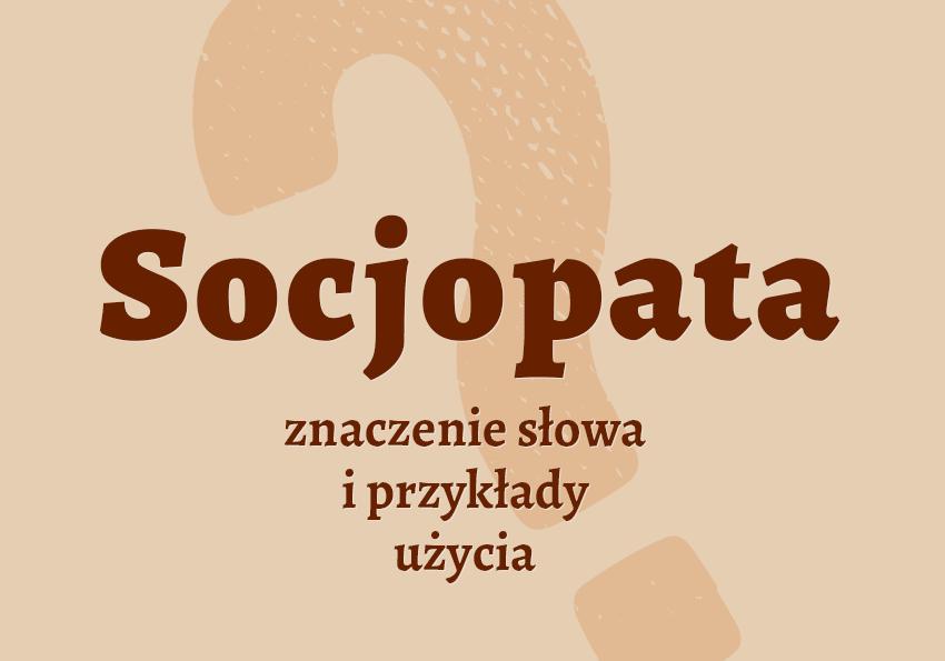 socjopata kto to jest kim jest definicja znaczenie slowa pojecie socjopaty synonim slownik Polszczyzna.pl