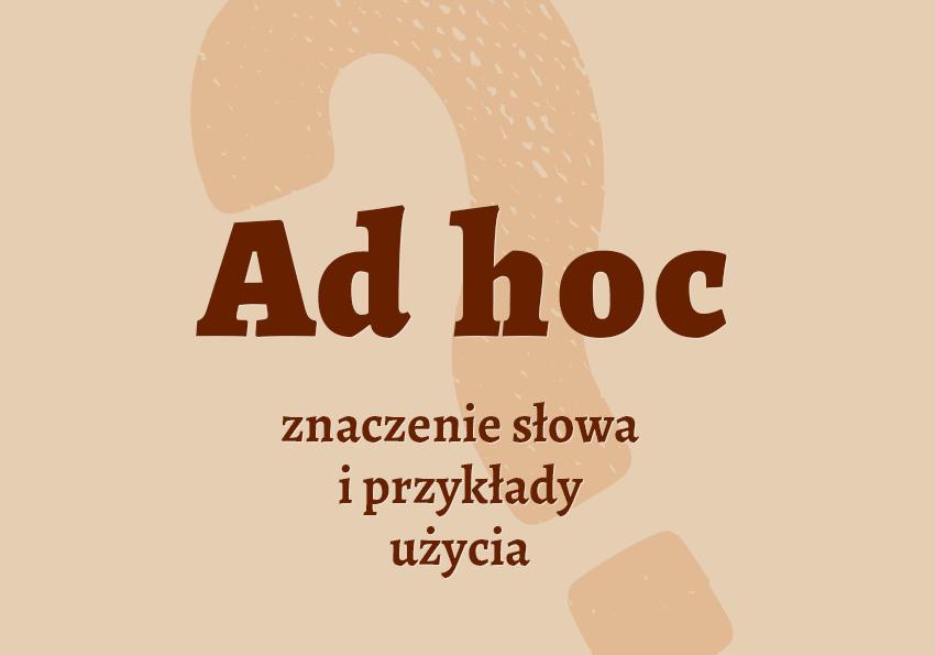 Ad hoc co to znaczy co to jest czym jest przykłady słownik ad hoc synonimy pochodzenie odmiana czy Polszczyzna.pl