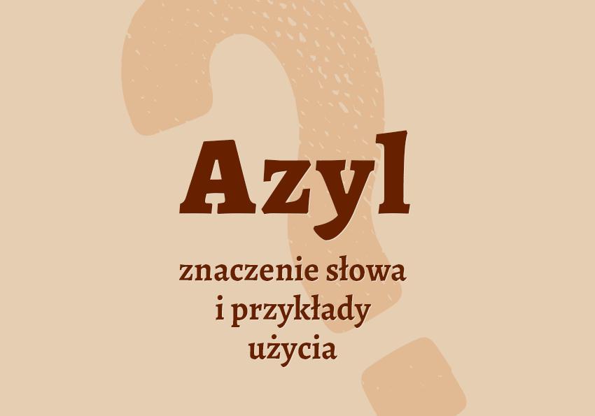Azyl co to jest słownik znaczenie azyl definicja azylu synonim Polszczyzna.pl