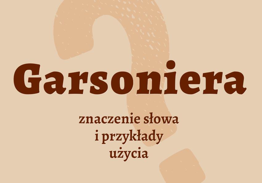 garsoniera co to jest definicja znaczenie pojecie czym jest inaczej jak nazwac garsoniery synonim slownik Polszczyzna.pl