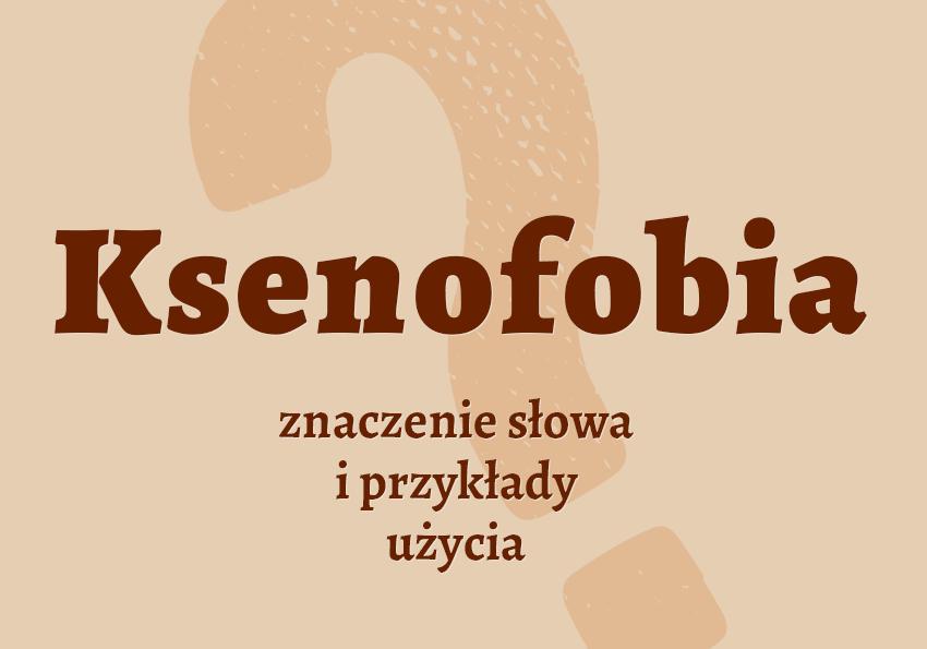 ksenofobia co to jest ksenofob kto to jest co to znaczy słownik definicja znaczenie przykłady ksenofobii ksenofobia synonim synonimy słownik Polszczyzna.pl