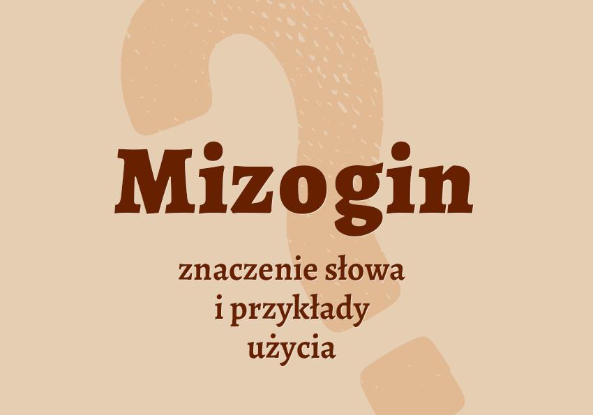 mizogin kto to jest kim jest znaczenie definicja mizogin synonim słownik przykłady odmiana co to znaczy mizoginia Polszczyzna.pl