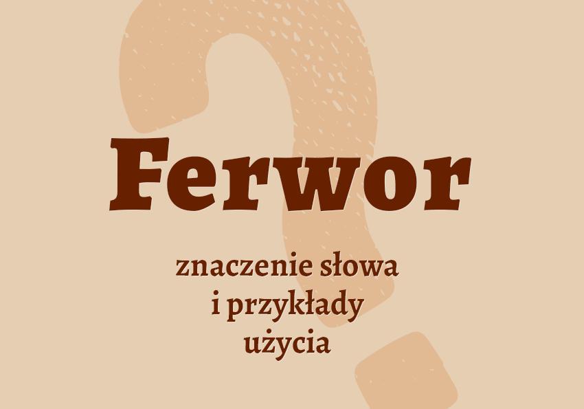 Ferwor co to jest co znaczy definicja znaczenie pojęcie czym jest w ferworze walki ferwor synonim słownik Polszczyzna.pl