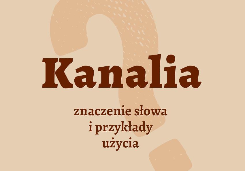kanalia kto to jest kim jest co to znaczy ktoś jest definicja hasło znaczenie film serial kanalia synonim słownik Polszczyzna.pl
