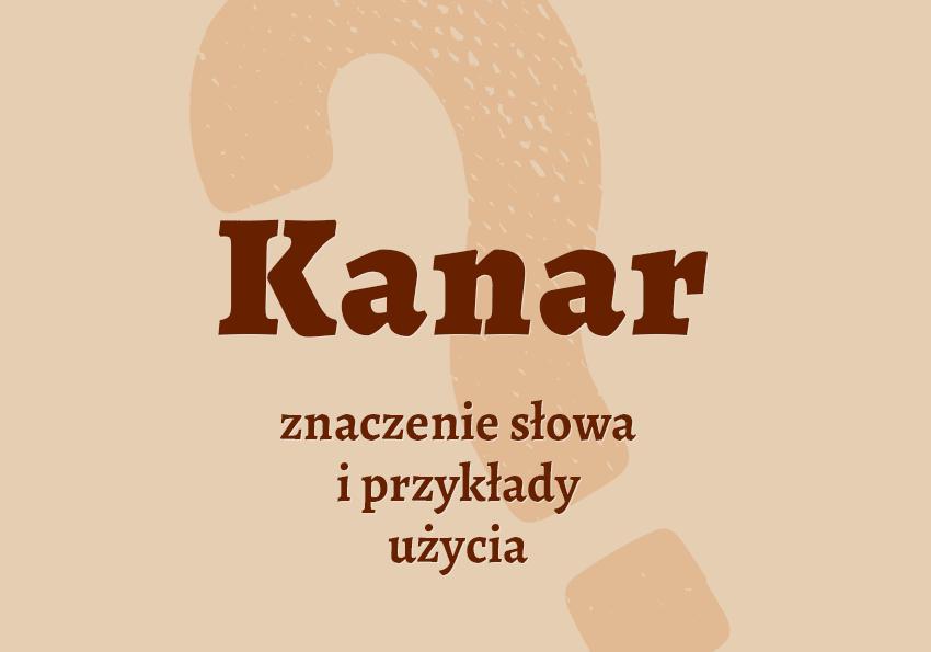 kanar kto to jest kim jest co to znaczy definicja znaczenie słowa hasło hasła krzyżówka komunikacja miejska bilet podróż autobus kolej pociąg synonimy przykłady słownik Polszczyzna.pl