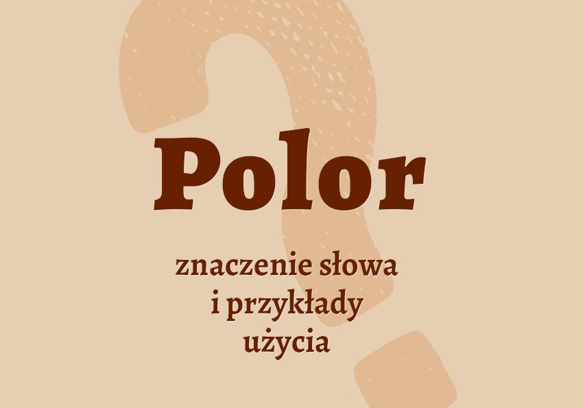 polor co to jest znaczenie definicja pojęcie czym jest jak inaczej nazwać polor synonim słownik Polszczyzna.pl