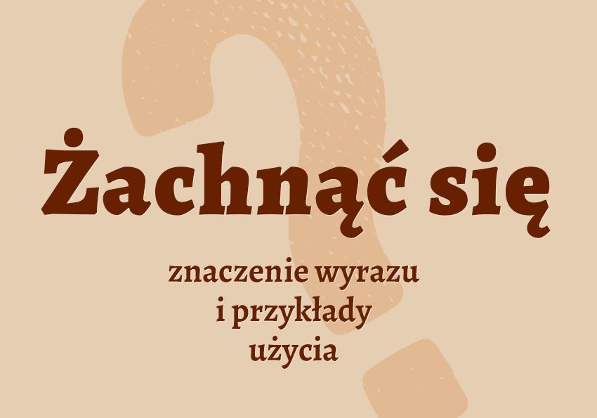 Żachnąć się co to znaczy definicja co to jest pytanie pojęcie jak inaczej żachnął żachnąć synonim Polszczyzna.pl