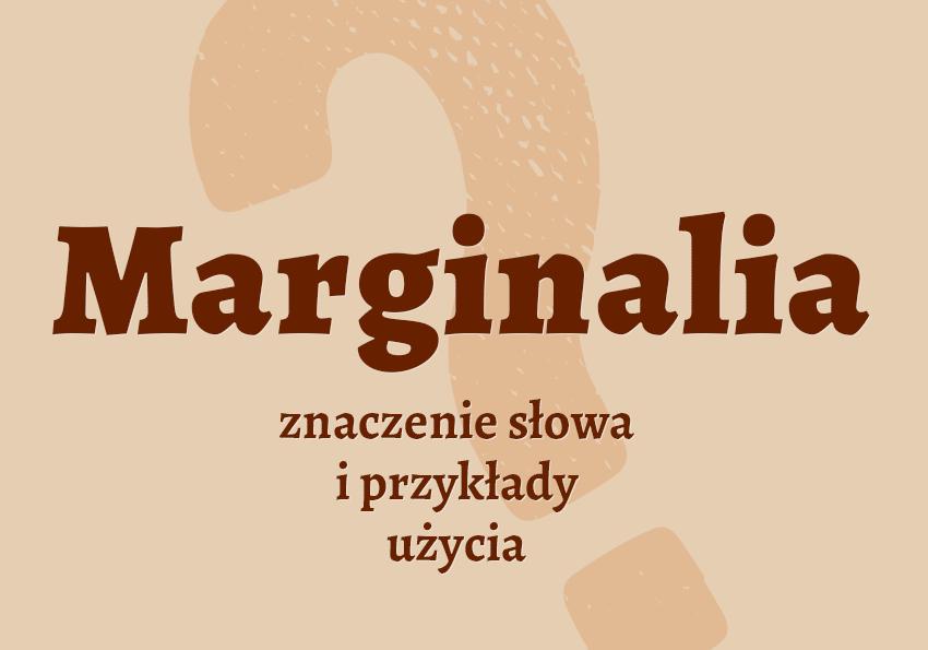 marginalia co to jest czym jest czym są znaczenie słowa