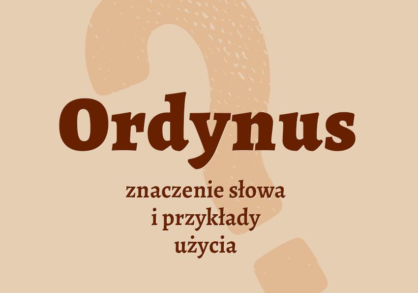 ordynus kto to jest kim jest znaczenie definicja co to jest co znaczy ordynarny synonim słownictwo hasło inaczej przykłady użycia słownik Polszczyzna.pl