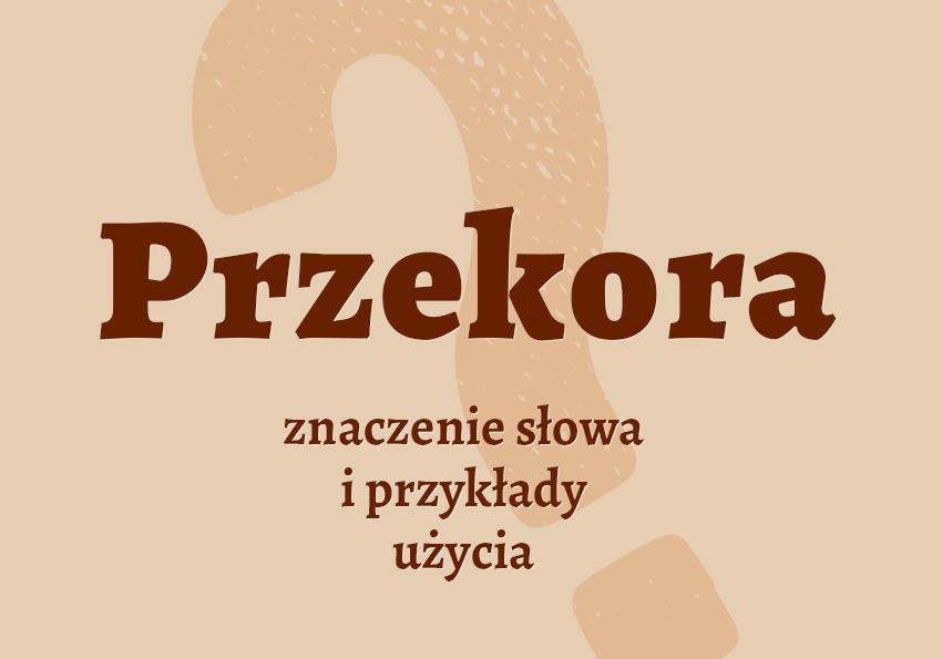 przekora znaczenie co to jest z przekorą definicja co to znaczy czym jest jak inaczej synonim wyrazy pokrewne przykłady słownik Polszczyzna.pl