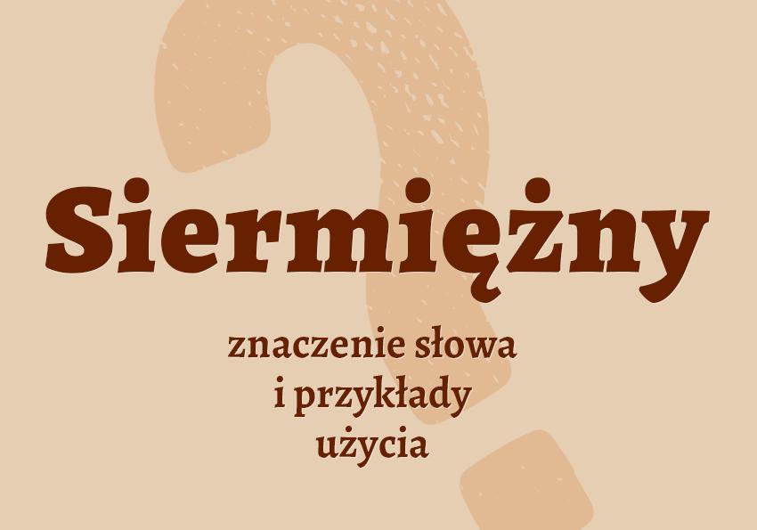 siermiężny co to znaczy co to jest kim jest jaki inaczej definicja znaczenie słowa przykłady użycia wyrazy pokrewne odmiana hasło krzyżówka hasła synonim siermiezny siermiega słownik Polszczyzna.pl