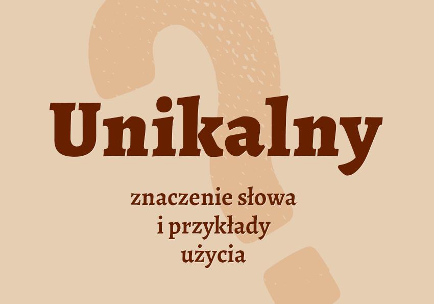 unikalny co to znaczy co to jest kim jest czyli jaki pojęcie hasło synonimy słownik Polszczyzna.pl
