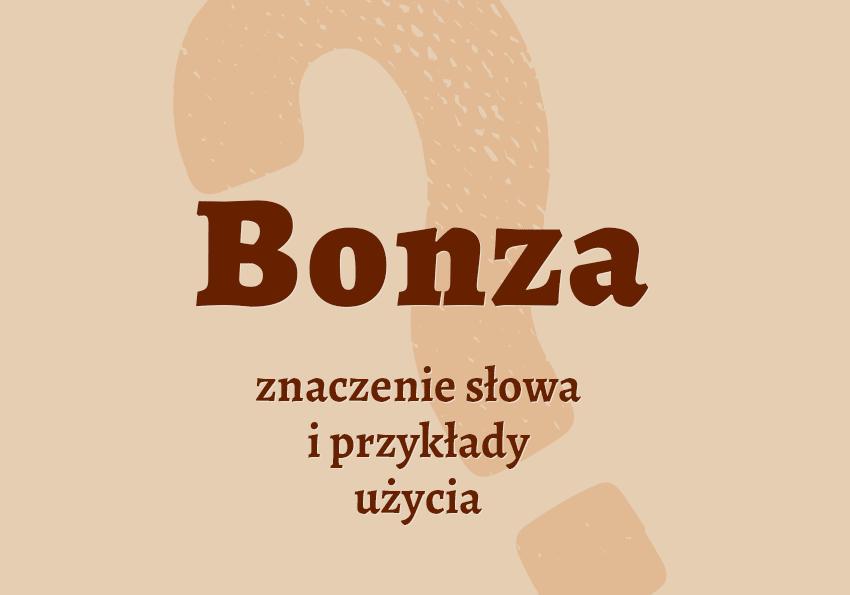 Bonza kto to jest kim jest co to jest czym jest znaczenie słowa definicja słowa synonim słownictwo przykłady użycia wyrazy pokrewne renta urząd synonimy hasło do krzyżówki inaczej słownik Polszczyzna.pl