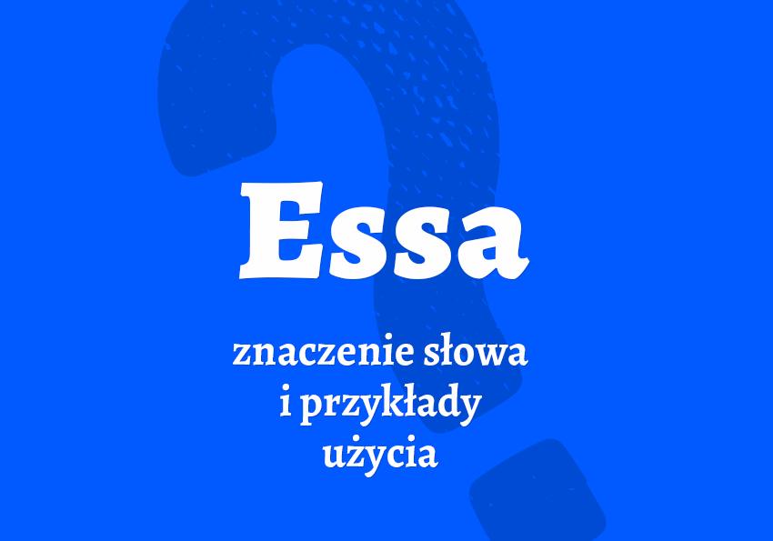essa co to jest co znaczy slang miejski piosenka rap Wini super ekstra essa synonim pochodzenie przyklady slang potoczny slownik Polszczyzna.pl