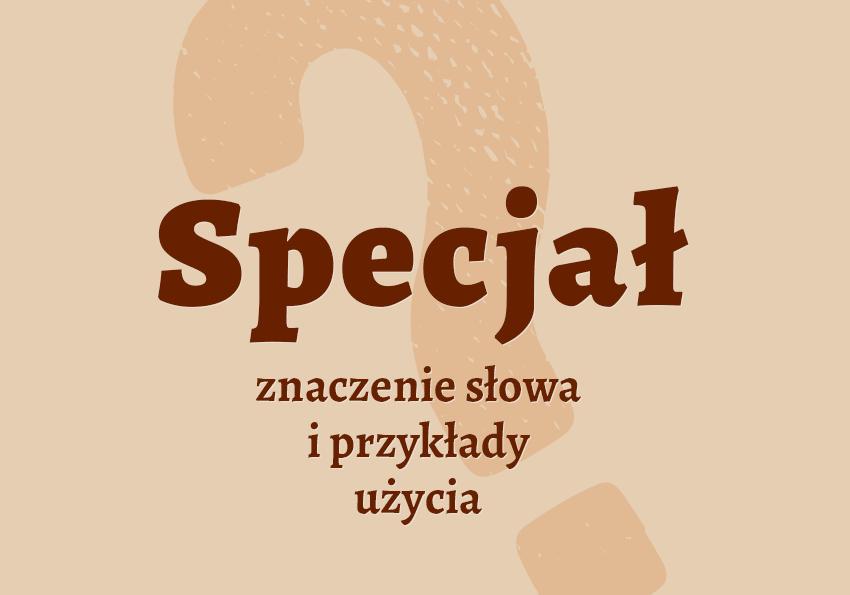Specjał co to jest czym jest znaczenie słowa definicja słowa synonim słownictwo przykłady użycia wyrazy pokrewne hasło do krzyżówki synonimy specjały inaczej słownik Polszczyzna.pl