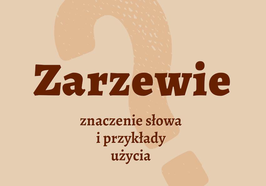 zarzewie co to jest definicja znaczenie czym jest synonim słownictwo przykłady użycia termin pojęcie wyrazy pokrewne hasło wojna historia konflikty krzyżówka inaczej słownik Polszczyzna.pl