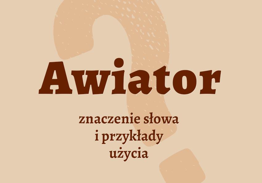 awiator co to jest definicja znaczenie inaczej lotnik słownik Polszczyzna.pl