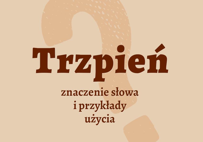 Trzpień co to jest? Definicja znaczenie pisownia synonimy słownik Polszczyzna.pl