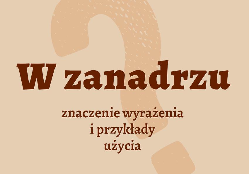 W zanadrzu - co to znaczy? Definicja i przykłady. Słownik Polszczyzna.pl