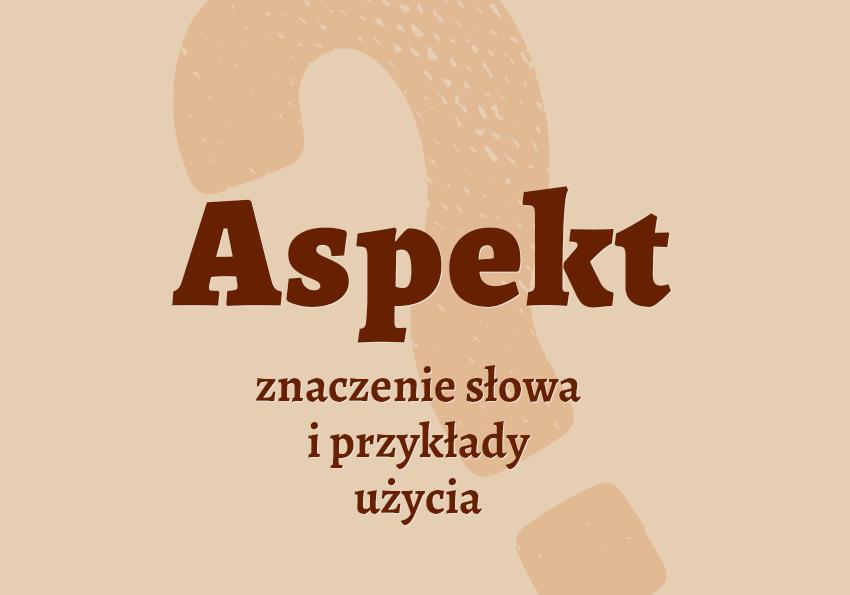 Aspekt co to jest co znaczy definicja słownik polskiego Polszczyzna.pl