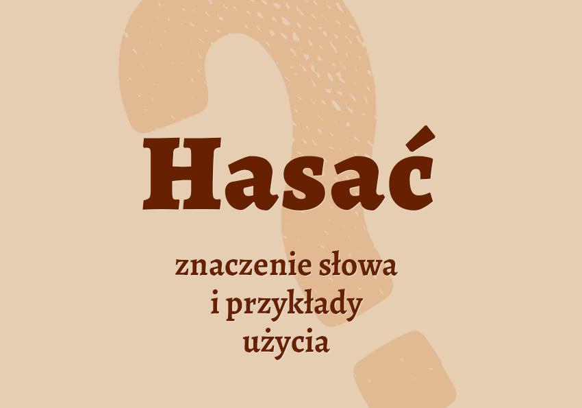 Hasać co to znaczy znaczenie definicja synonim inaczej słownik Polszczyzna.pl