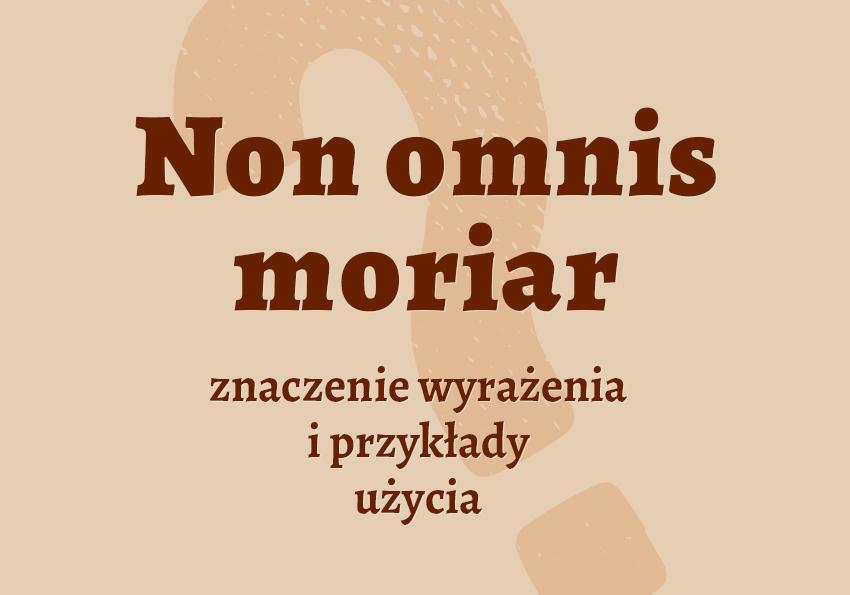 Non omnis moriar co to znaczy definicja łacina słownik Polszczyzna.pl