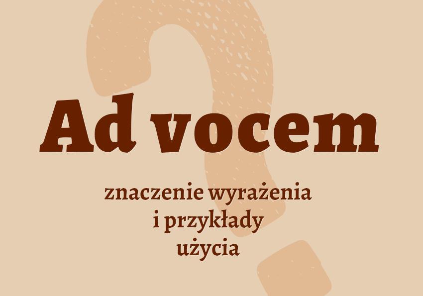 Ad vocem co znaczy? Definicja znaczenie przykłady słownik poradnia Polszczyzna.pl