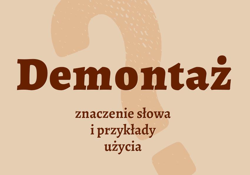 Demontaż co to jest co znaczy samochód synonim definicja słownik Polszczyzna.pl