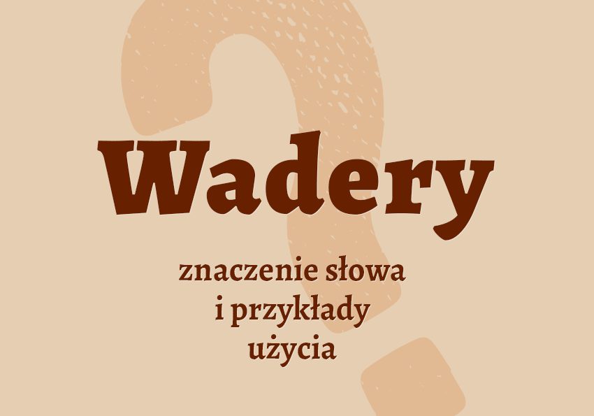 Wadery co to takiego znaczenie definicja odzież słownik Polszczyzna.pl