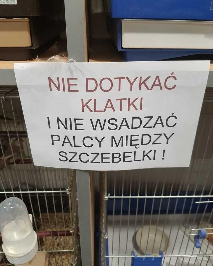 klatka zwierzę perełki polszczyznowe prosto z ulicy. Wpadki błędy językowe Zabawne śmieszne żart Część 9 - Polszczyzna.pl