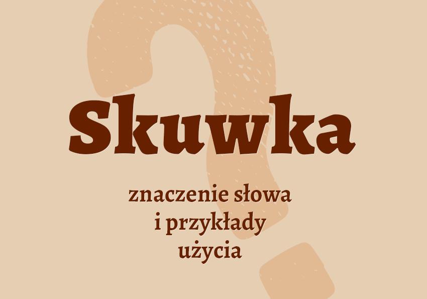 skuwka co to jest pisownia definicja synonim znaczenie słownik Polszczyzna.pl