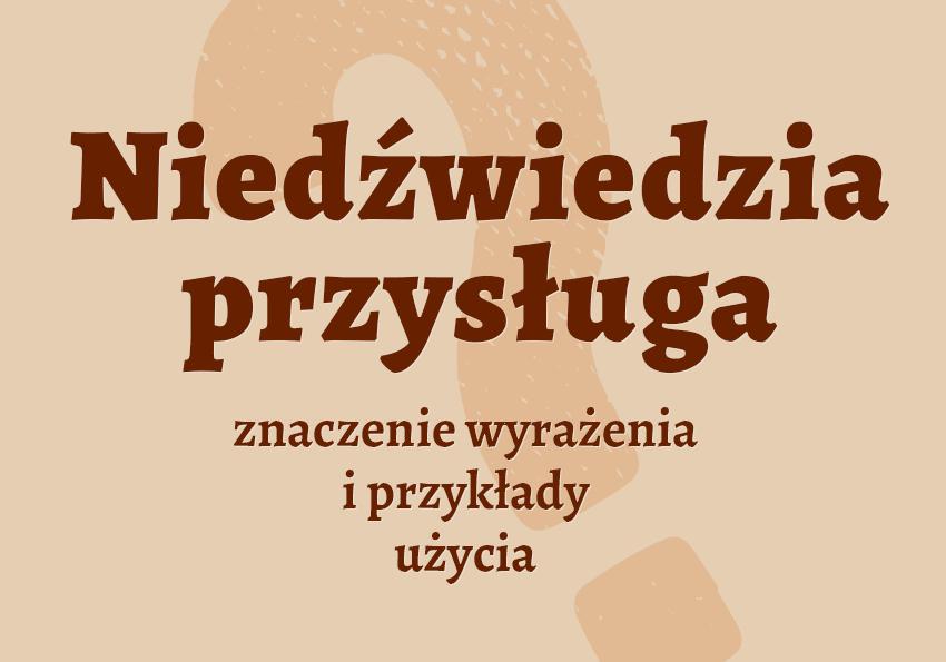 Niedźwiedzia przysługa znaczenie. Co to znaczy, definicja. Synonim inaczej frazeologizm powiedzenie przykłady słownik Polszczyzna.pl