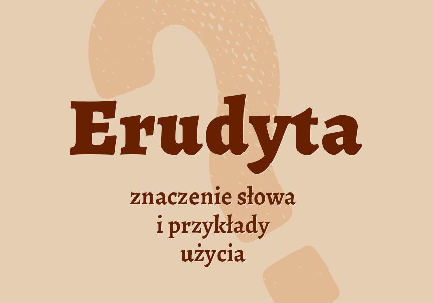 Erudyta - czyli kto? Kim jest? Definicja, znaczenie, synonim. Słownik Polszczyzna.pl